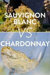 Chard vs Sauv
