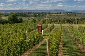 Canada wine country